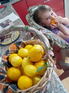 Fruitvale Meyer Lemons SF Bay Area