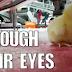 Μέσα από τα μάτια τους... Ένα συγκλονιστικό βίντεο