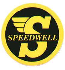 Speedwell