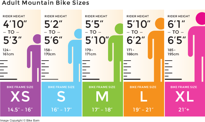 Bicycle Guide