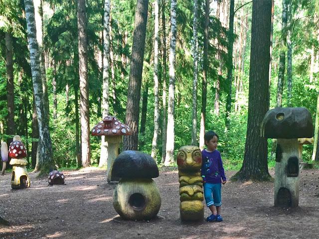 masal ormanı letonya tervete