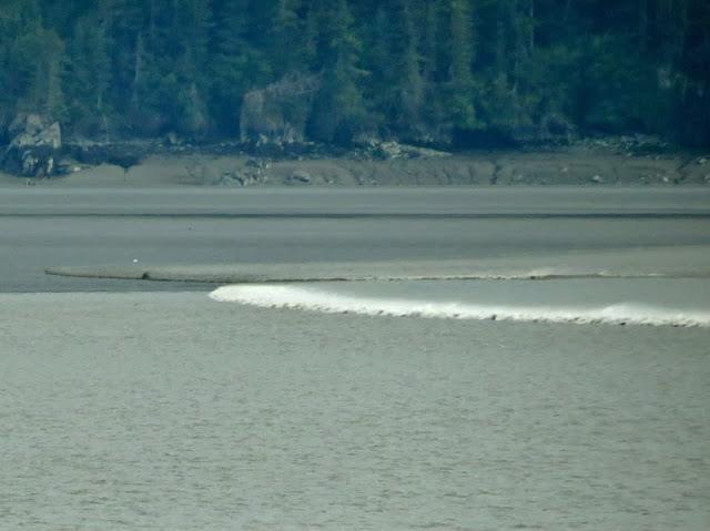 bore tide in Alaska