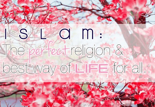 Islam: The perfect religion and the best way of life for all...