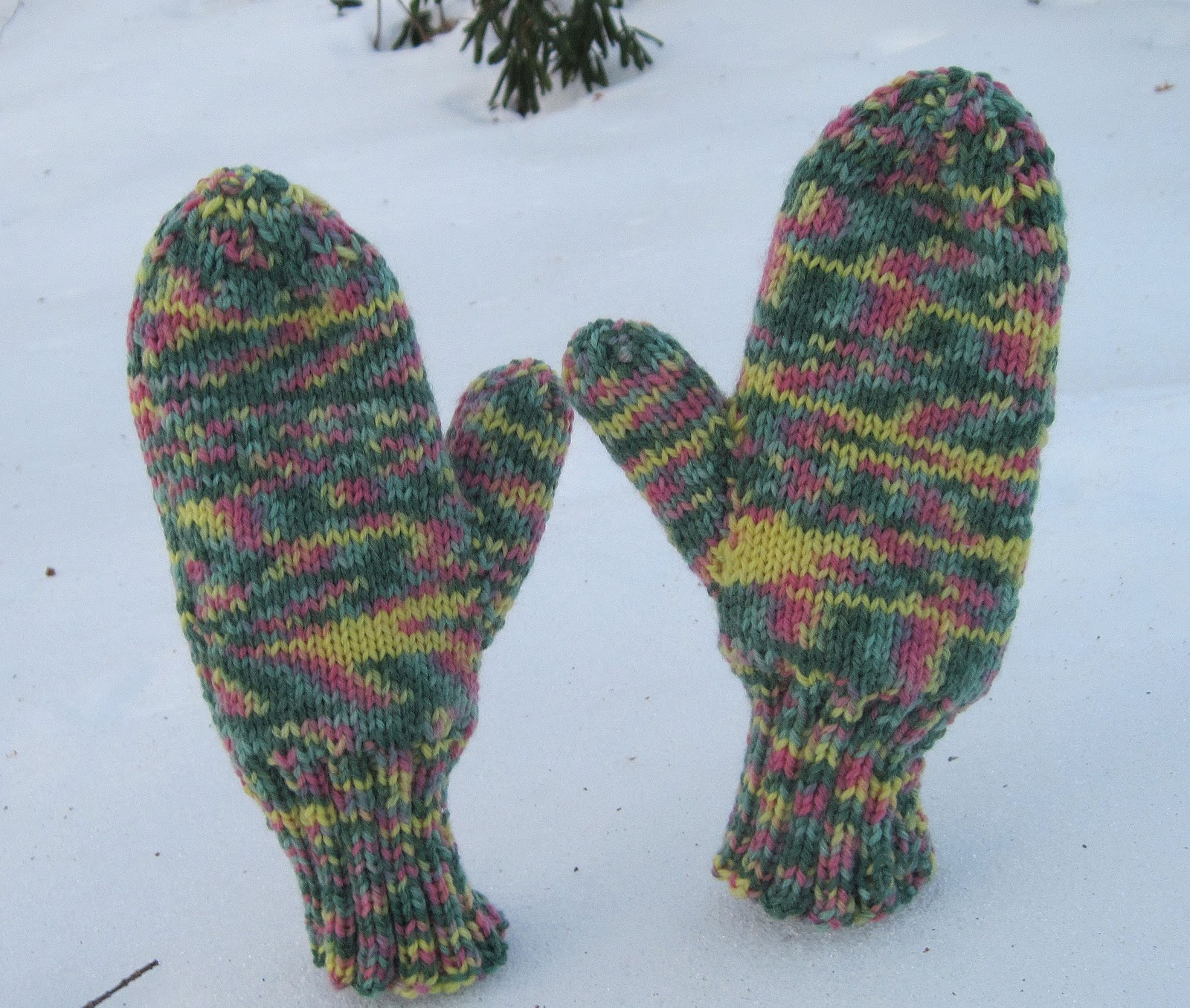 Double Knit Mitten Pattern : Yarns With A Twist: February 2011