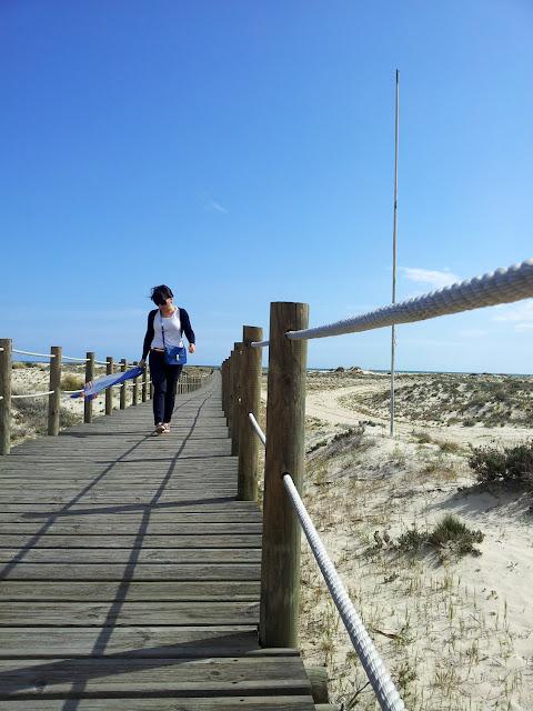 playa+isla+de+armona