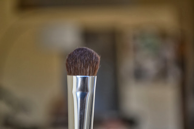 Coastal scents medium shadow brush