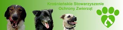1 % na Krośnieńskie Stowarzyszenie Ochrony Zwierząt