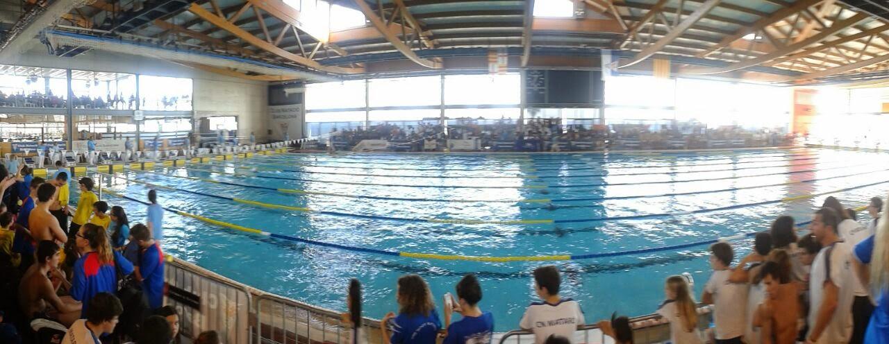 Blog andrea campionat de catalunya d hivern de nataci infantil i junior - Piscina municipal mataro ...