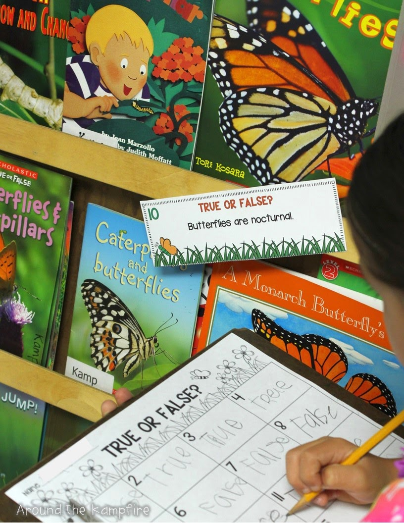 Butterfly life cycle facts: True or false?