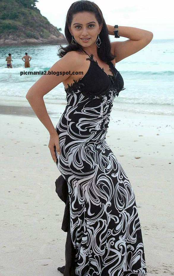 south indian sexy actress hema malini ( naan avan allai 2) hot wet image gallery