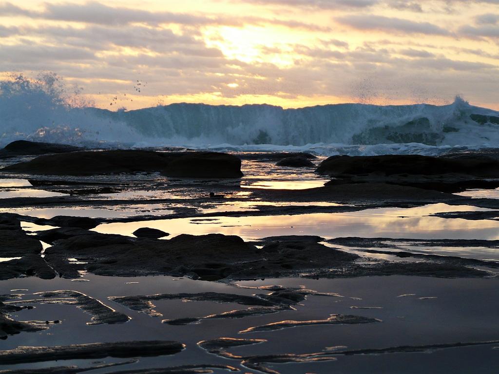 exotic relaxation sunshine coast incall brisbane