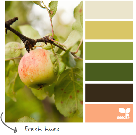 http://design-seeds.com/index.php/home/entry/fresh-hues5
