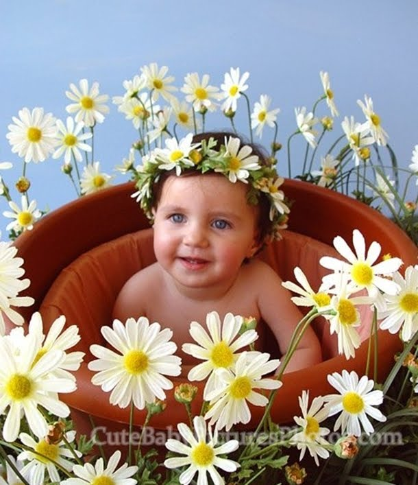 Cute Babies with Flowers | Enter your blog name here