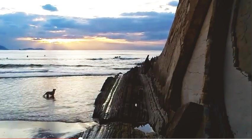 Paisaje humano,perro,Barinatxe,Stendhal,playa Salvaje