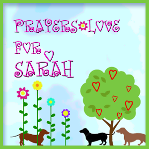 Purrs and Prayers for Sarah.
