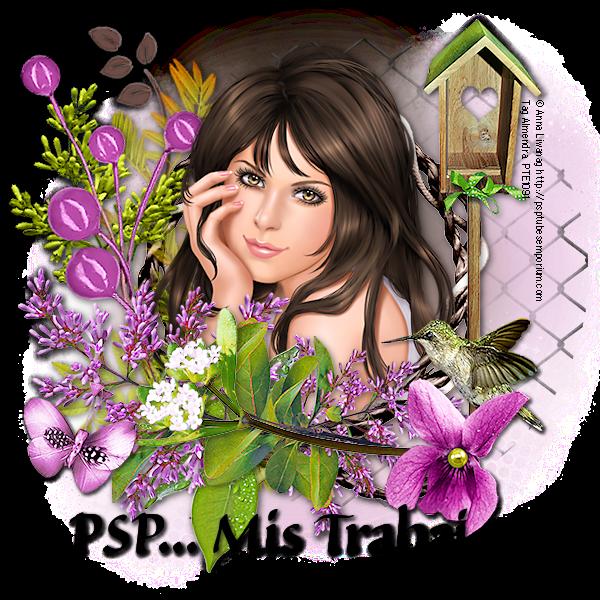 PSP... Mis trabajos
