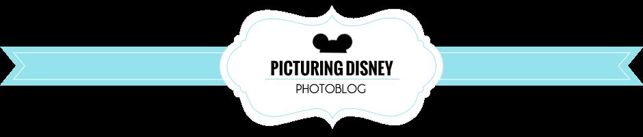 Picturing Disney