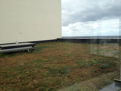 green roof and ocean