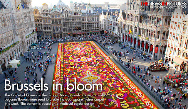 The Carpet of Flowers Brussels
