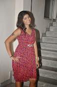 Geethanjali glamorous photos-thumbnail-8
