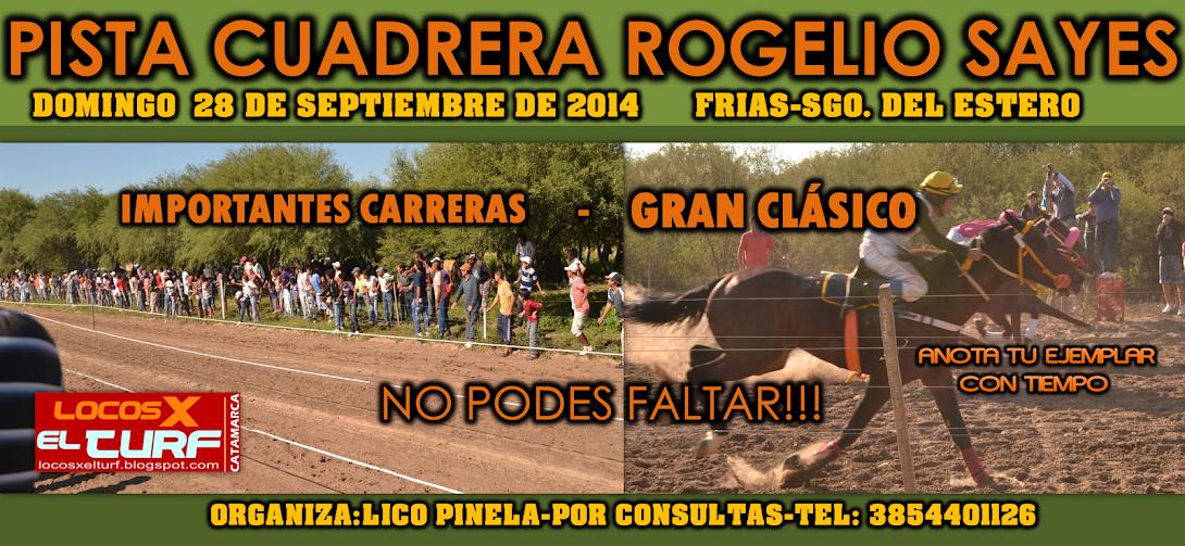 28-9-14-HIP. ROGELIO SAYES