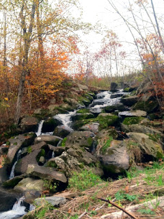 waterfall by the beaverkill river