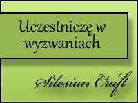 silesiancraft