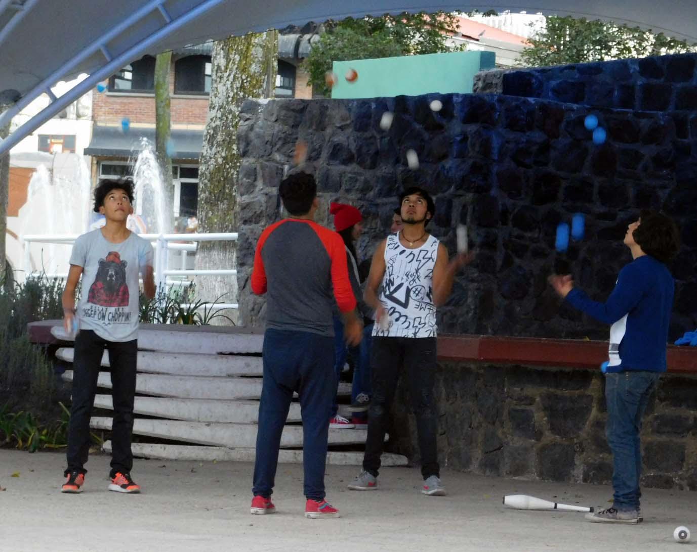 Encuentro internacional de malabares en toluca agencia manl for Viveros en toluca