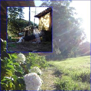 Fazenda 56 alqueires próximo a Bela Vista de Goiás