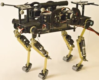 This is cheetah-cub, a compliant quadruped robot.