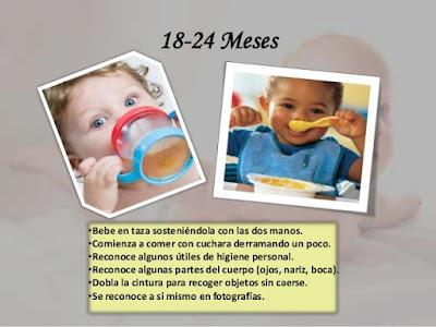 Neurodesarrollo terapéutico niños entre 18 y 24 meses
