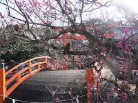 桃の節句、下鴨神社