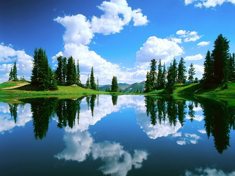 http://www.funmag.org/pictures-mag/nature/nature-reflections-photos/