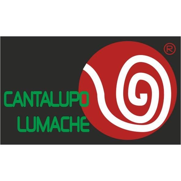 Cantalupo Lumache