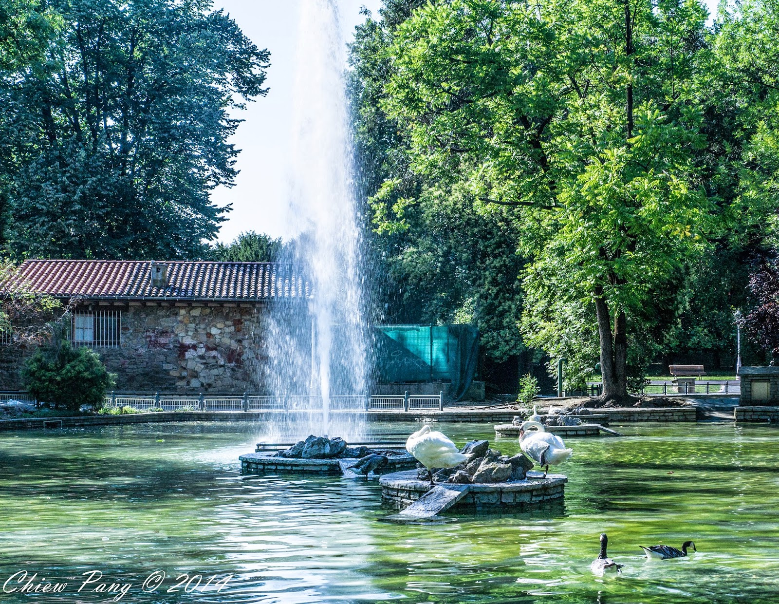 Duck's Park, Bilbao