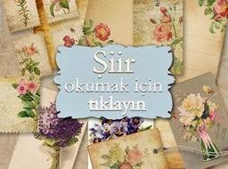 ŞİİR KÖŞESİ / ŞİİRLERİM