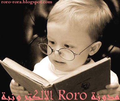 مدونة roro