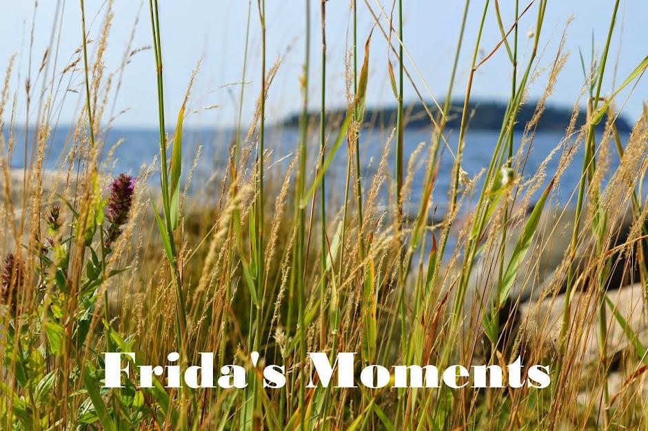 Frida's Moments