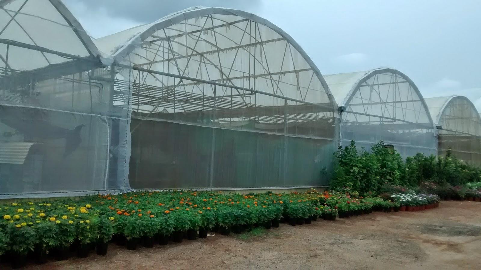 Yuktix Technologies Greenhouse Polyhouses Developing