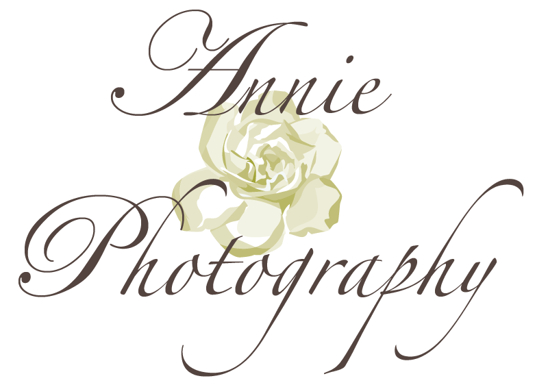 Annie Photography- hudson, cleveland, akron photographer