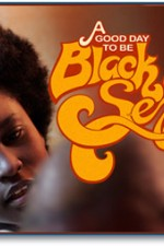 Watch A Good Day To Be Black And Sexy 2008 Megavideo Movie Online