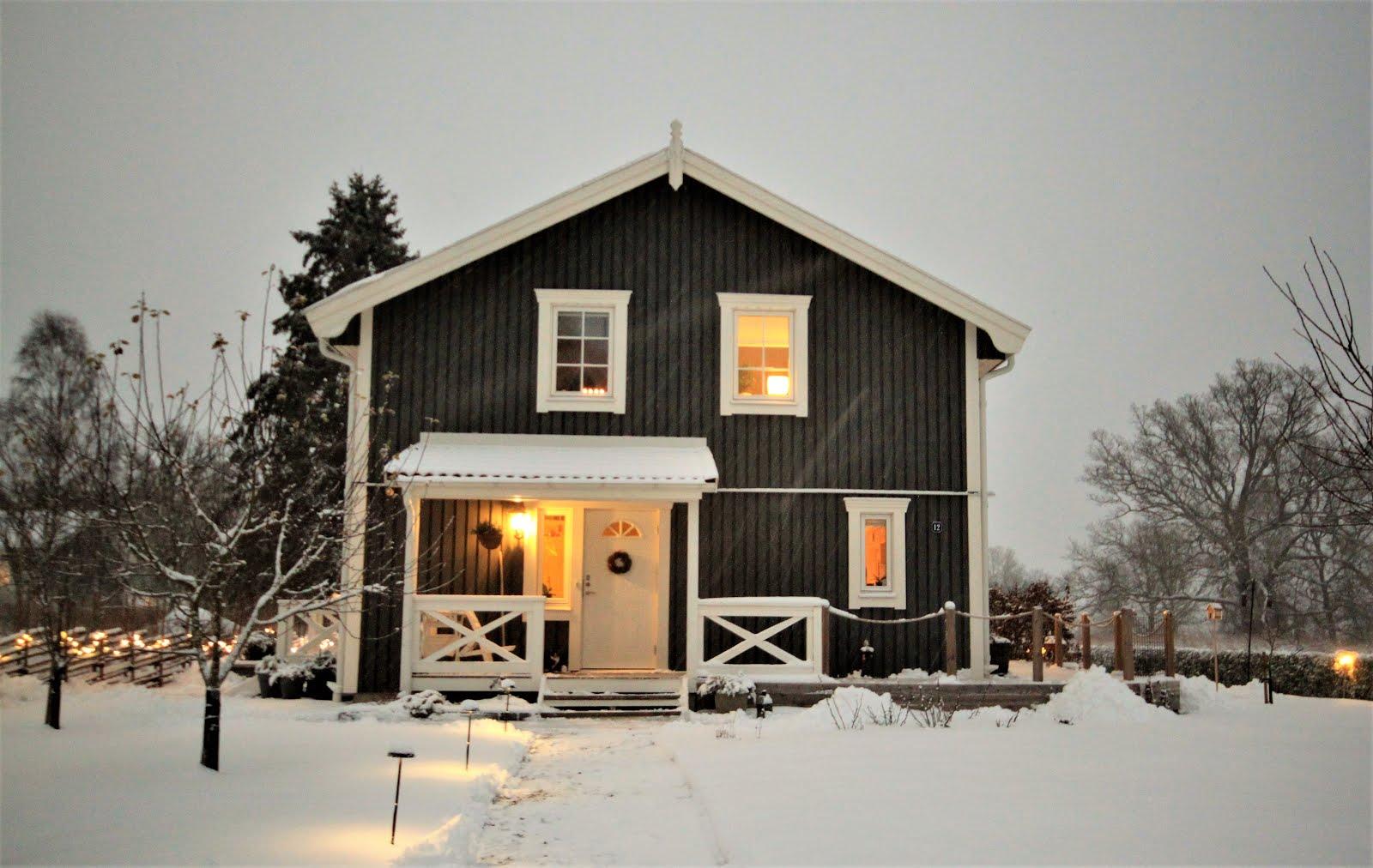 Vinter i Carlslund