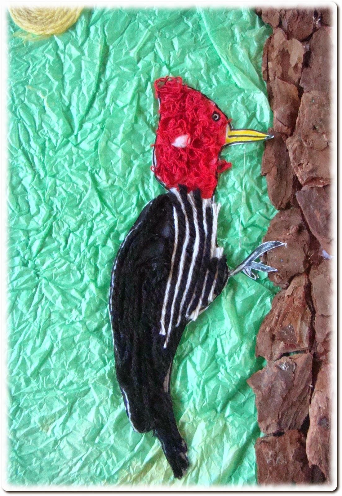 Pica-pau o maior marceneiro dos pássaros