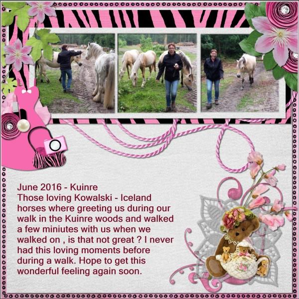Aug.2016 Me and Kowalski - Iceland horses