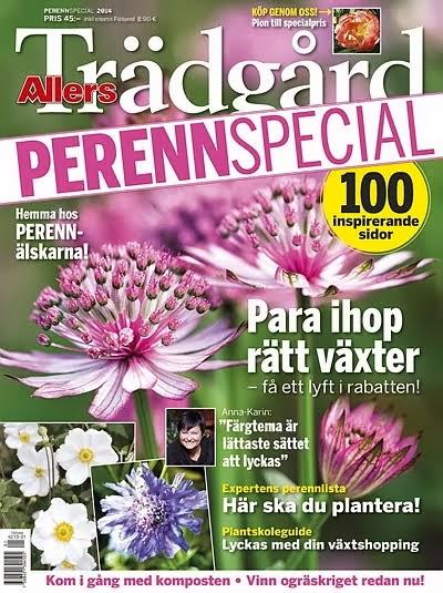 Allers trädgård Perennspecial 14