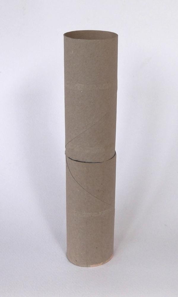 toilet paper rolls, toilet paper tubes, cardboard tubes, cardboard rolls