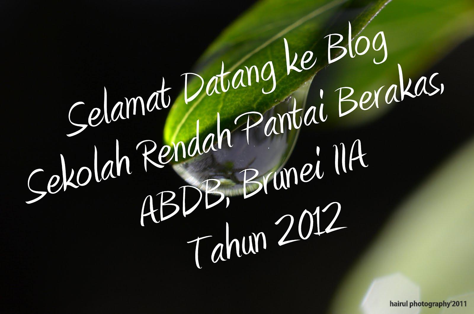 Sr. Pantai Berakas, ABDB, Brunei IIA