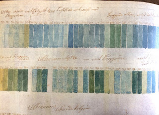 Ferdinand Bauer's Colour Notebook, Royal Botanic Gardens Madrid