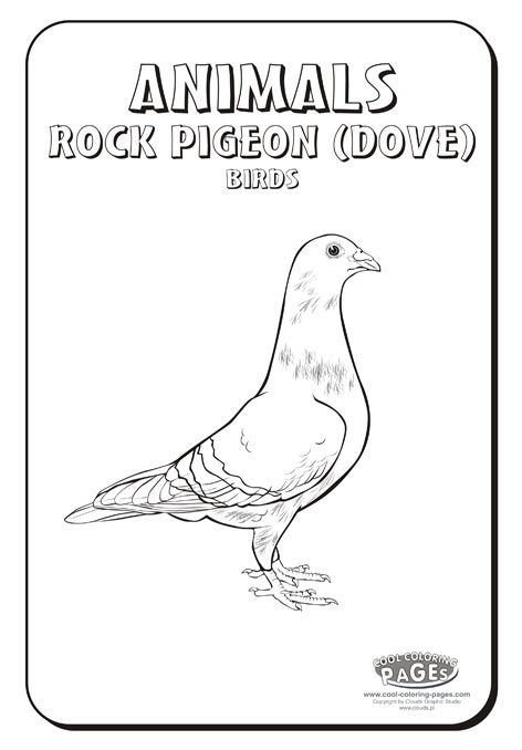 coloring pages pigeon - photo#30