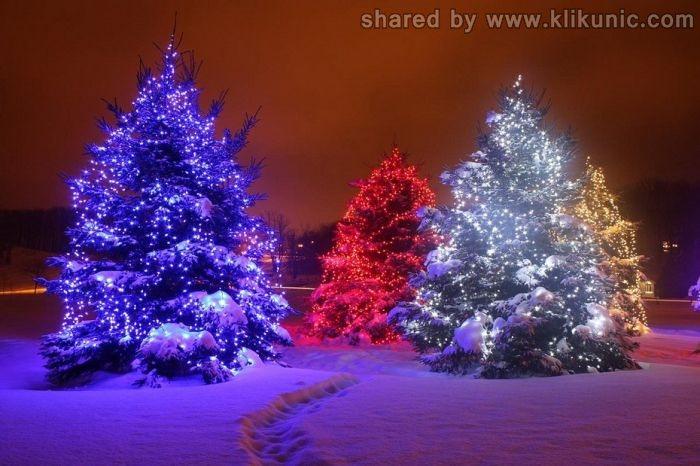 http://2.bp.blogspot.com/-1CESMSCG3M8/TXiDR0LsbGI/AAAAAAAAQlI/TXdFtpsrBTg/s1600/winter_34.jpg